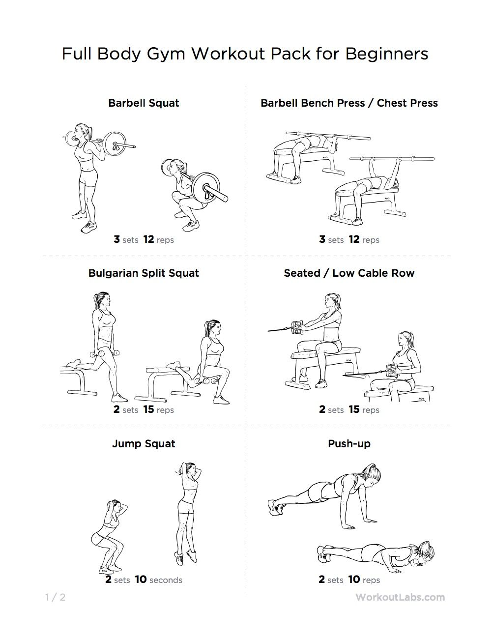 Full Body Gym Workout Pack For Beginners