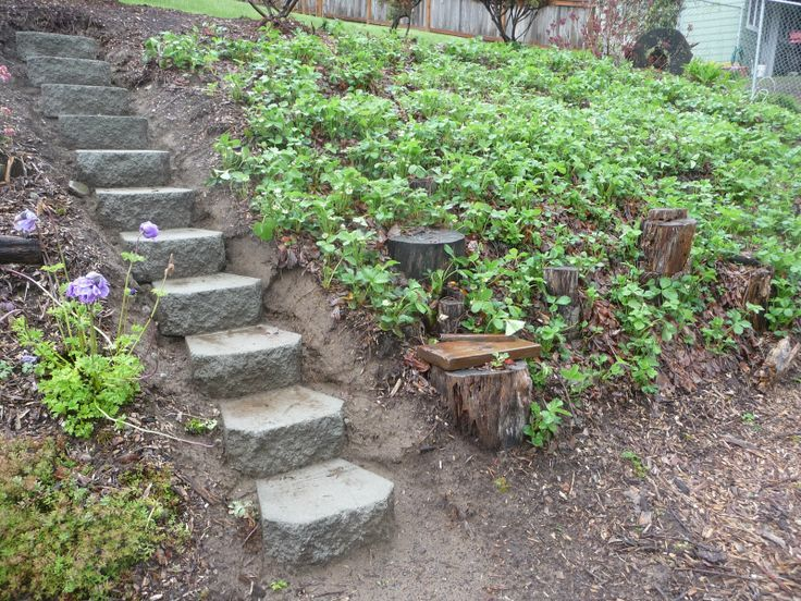 Garden steps for hill garden and table new steps into for Landscape ideas for hilly backyards