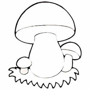 раскраска гриб для детей 1 грибы раскраски грибы и