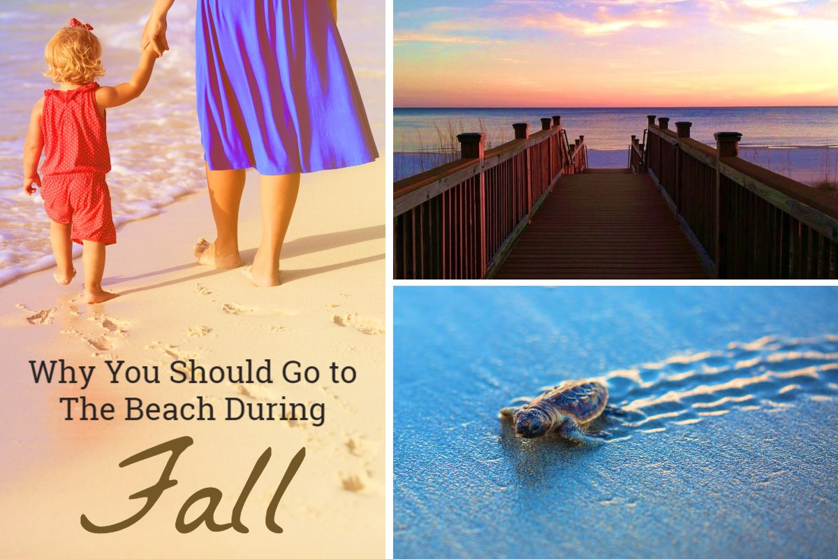 Why You Should Go To The Beach In Fall By Pkrm Beach Perdido Key Florida Fall