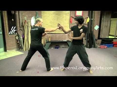 Kung Fu Eagle Style Eagle Claw Kung...