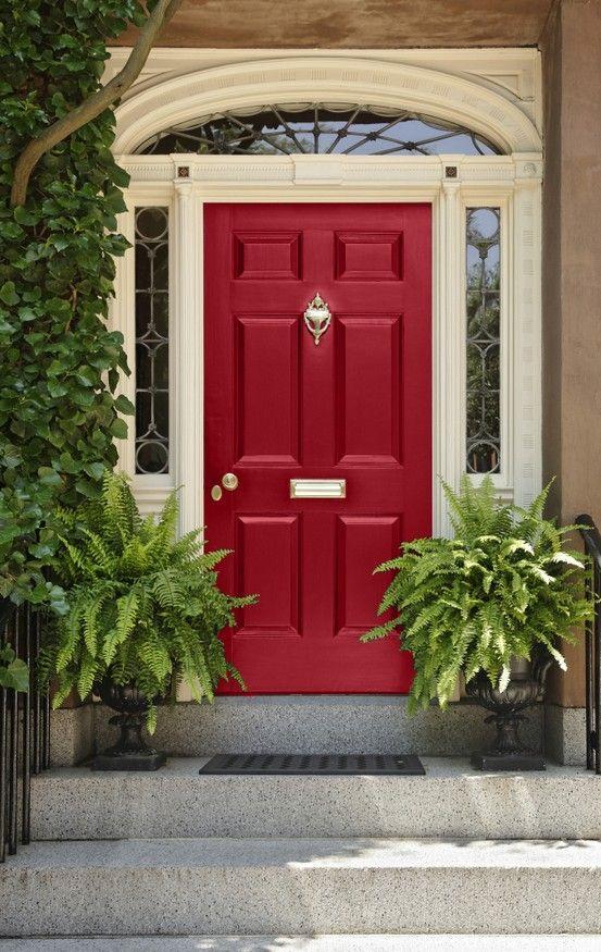 FERNS - FOUGÈRE - : Quelles sont les meilleures plantes pour décorer la porte d'entrée