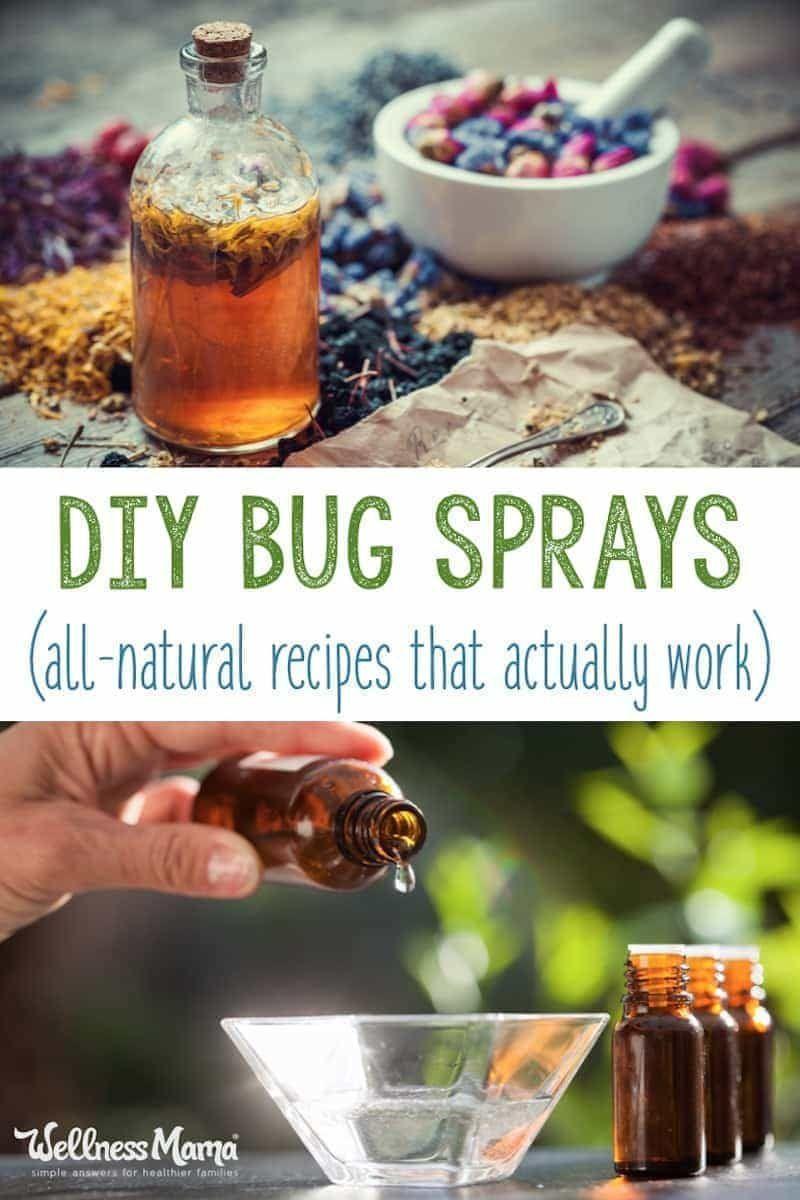 Homemade bug spray recipes that work homemade bug spray