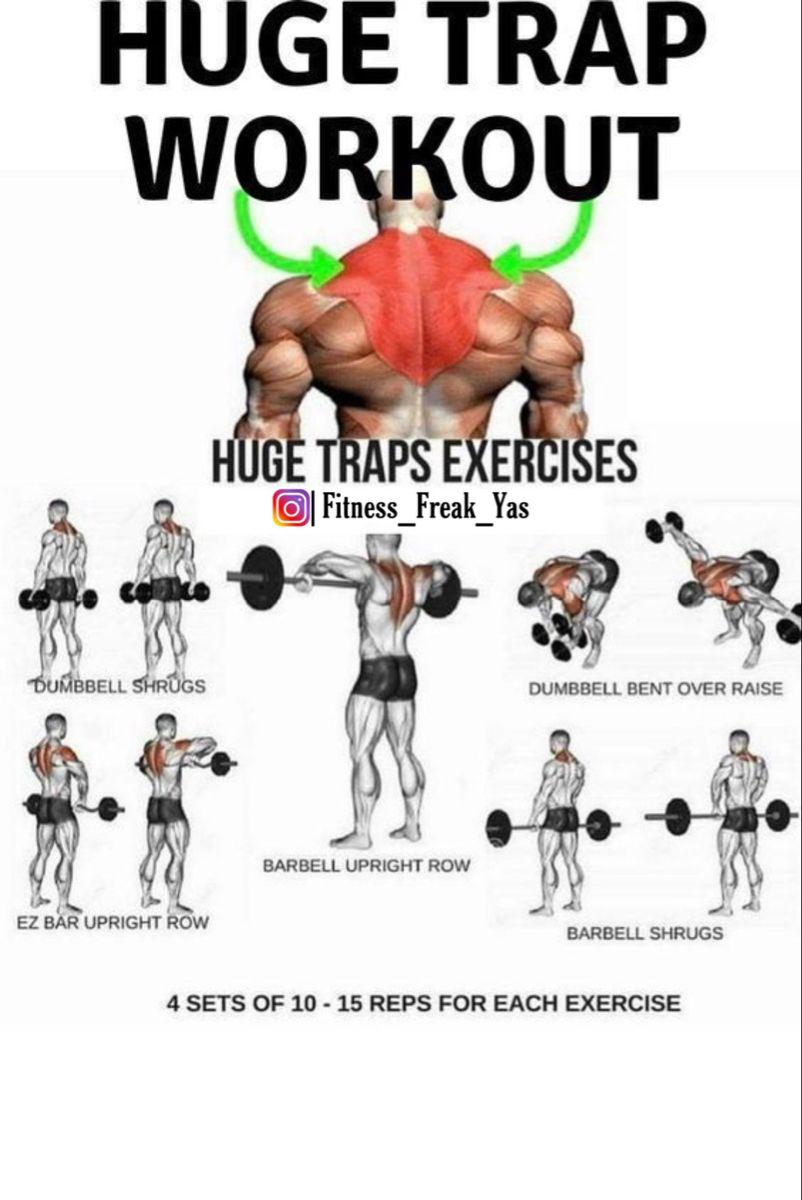 Pin By Yas On Male Workouts Traps Workout Trap Workout Workout