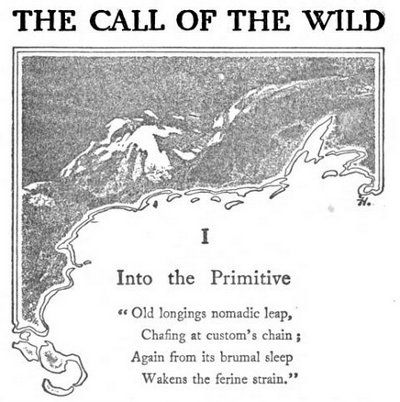 The call of the wild essay