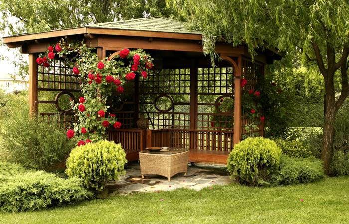 Lotus Peyzaj Bahçe