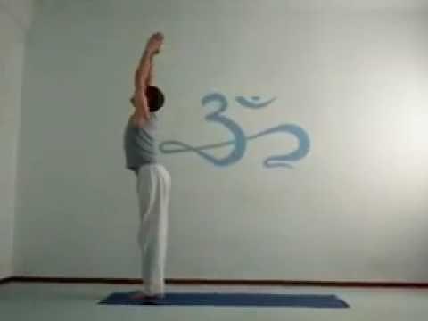 surya namaskar sun salutationquim altés  yoga