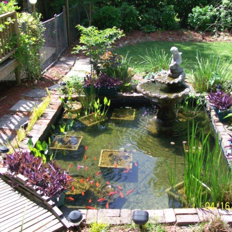 Koi Pond Designs | Koi pond design, Ponds backyard, Fish ... on Koi Ponds Ideas  id=85086