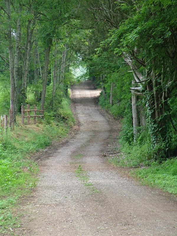 Everyone in Tennessee has been down a road just like this!  Home Sweet Home! Love Roads Like This!!!