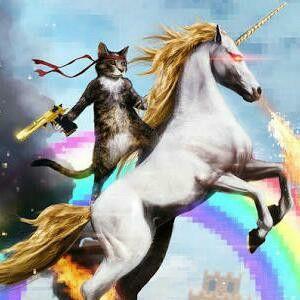 Cat in a horse jajajajaja