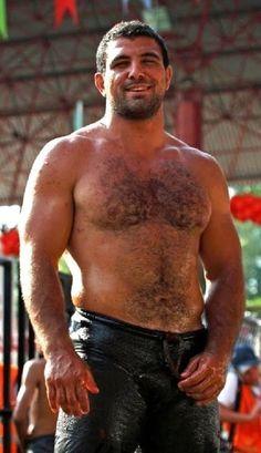Beefy bear wrestlers part ii