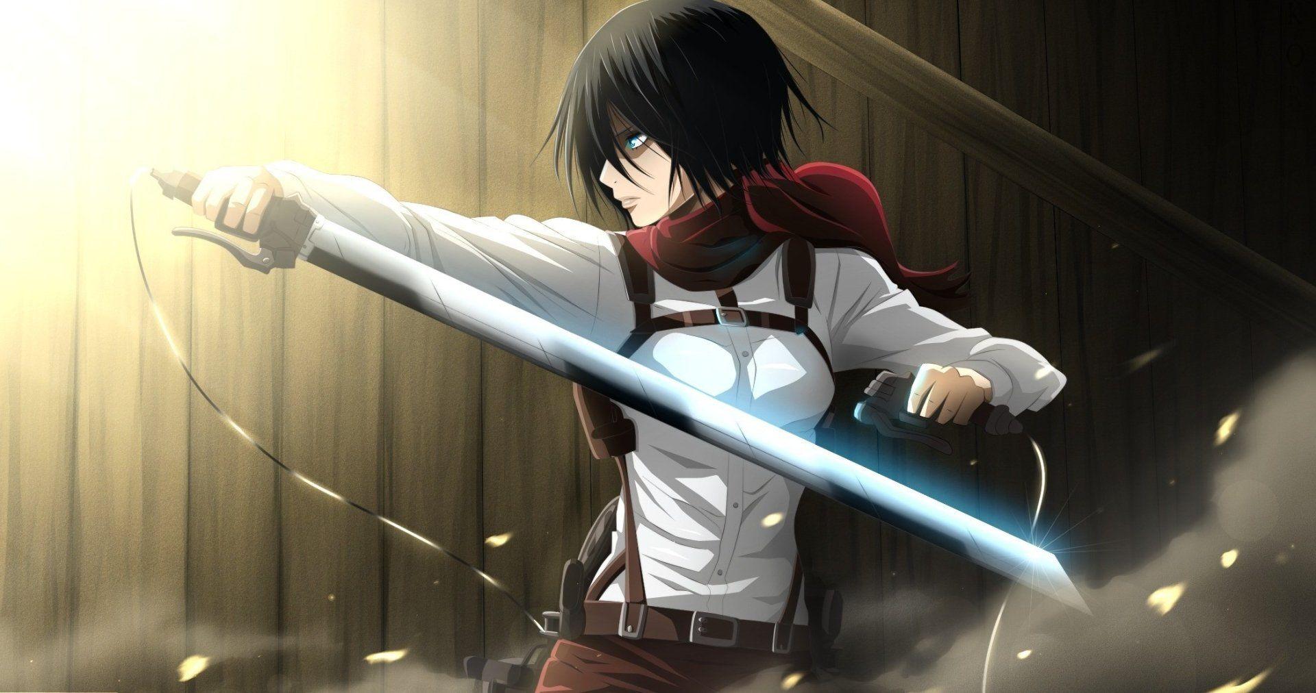 Anime Attack On Titan Mikasa Ackerman Weapon Black Hair