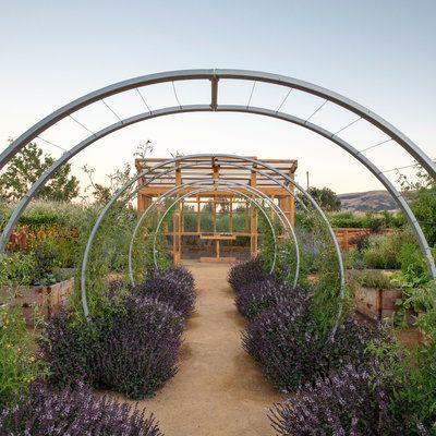 12 great backyard farm ideas