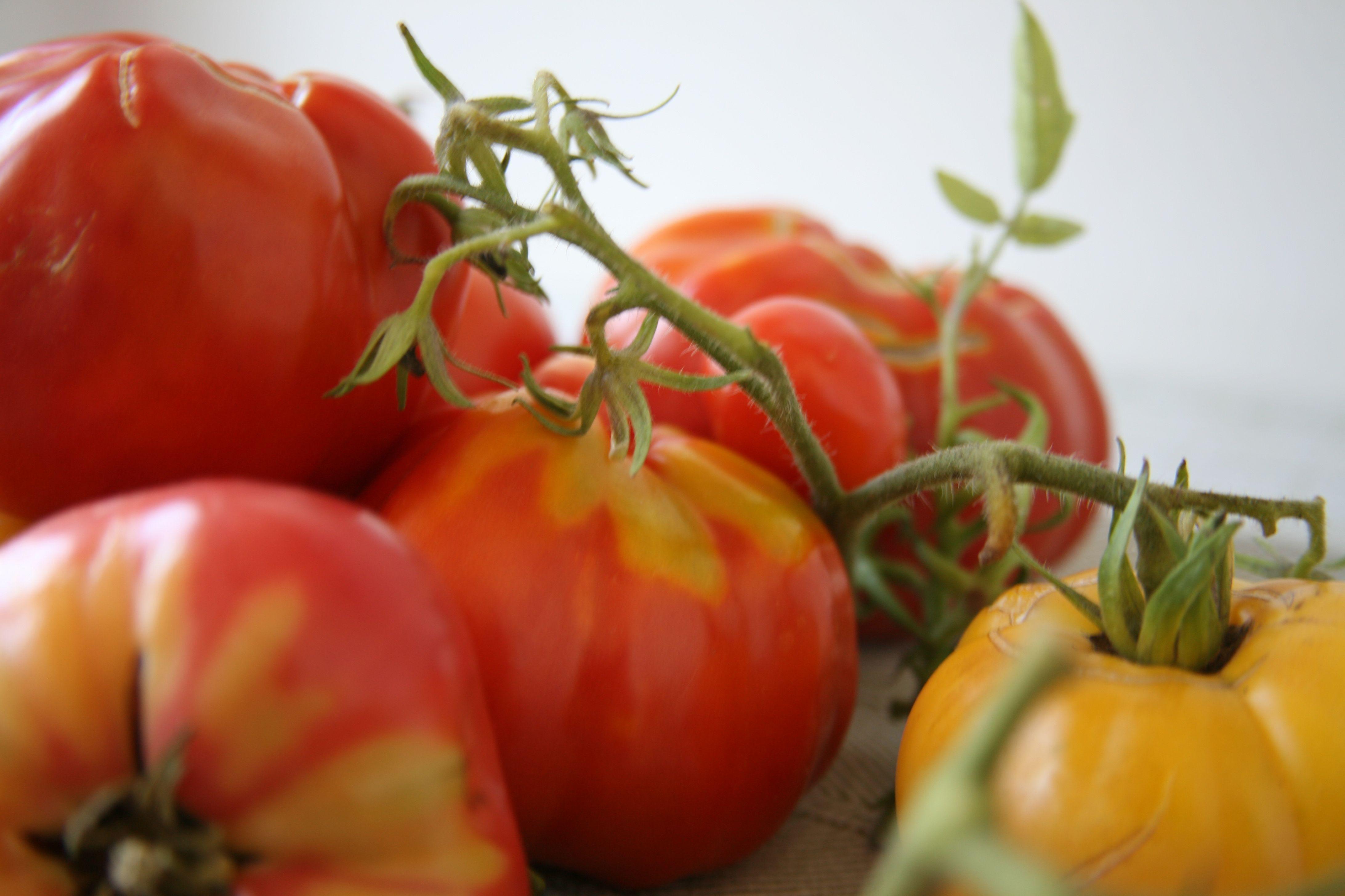Slow Cooked Summer Tomato Sauce Lidia Tomato Tart Garden Recipes Lidia S Recipes