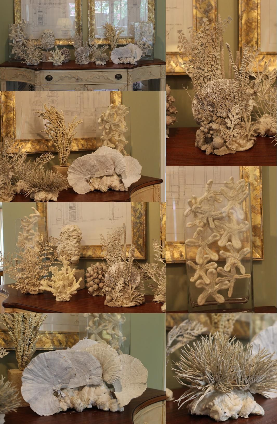 Diy Coral With Images Sea Decor Beach Crafts Seaside Decor