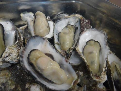 瀬戸内海産牡蠣の缶焼きセット2kg