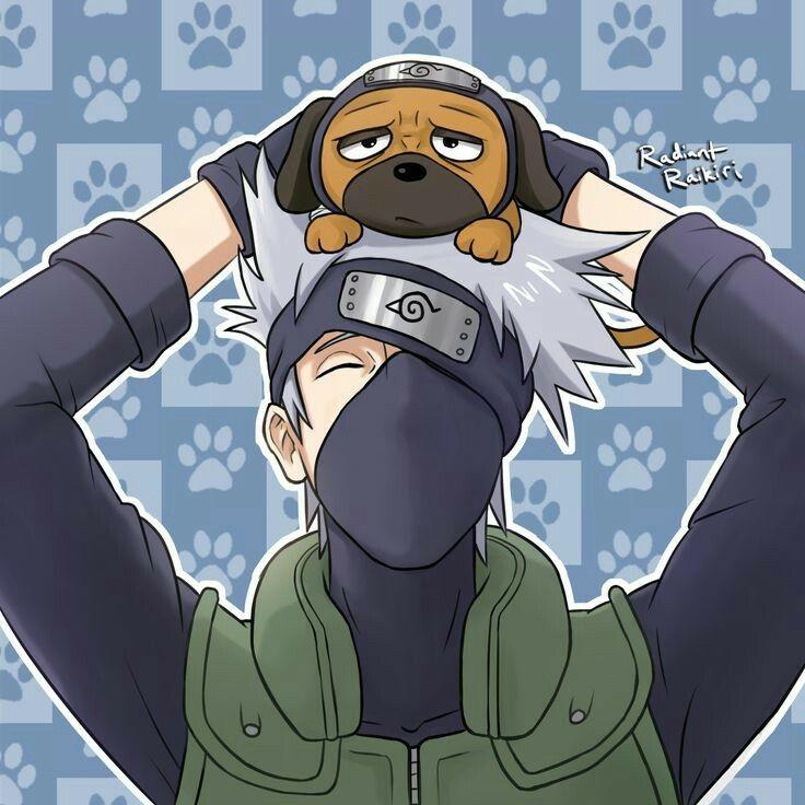Hatake Kakashi, smiling, Pakkun, cute; Naruto | Naruto ...