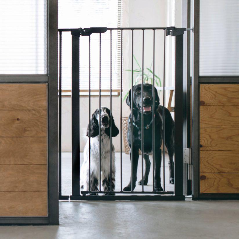 楽天市場 北欧 スチール製 ゲート スカンジナビアンドッグフェンス トールスカンジナビアン 北欧 ペットフェンス ドッグフェンス おしゃれ シンプル ゲート ケージ つっぱり ガード 柵 階段 パーテーション 仕切り Free Stitch 犬 ゲート 犬ケージ 大型犬