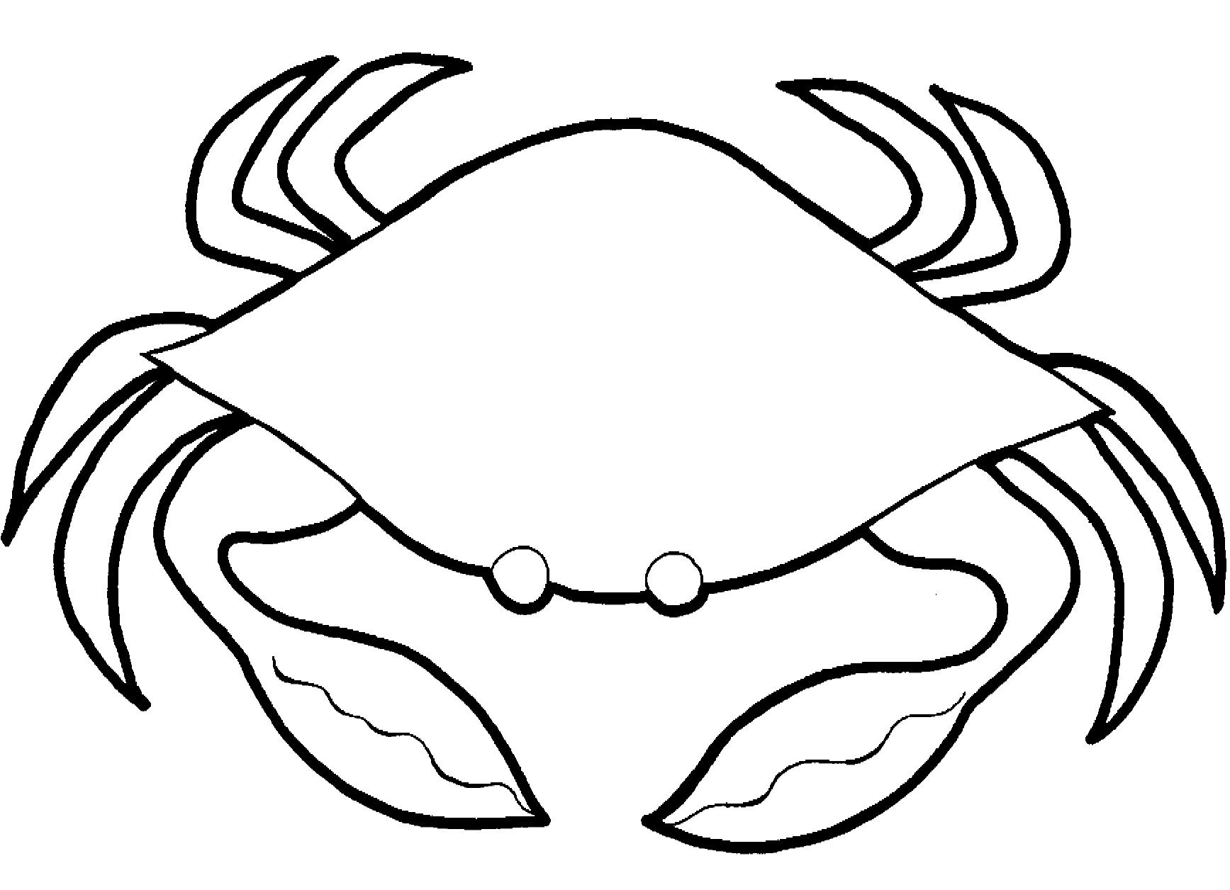 crab coloring pages free printable coloring pages simple c - Printable Coloring Pages Kids