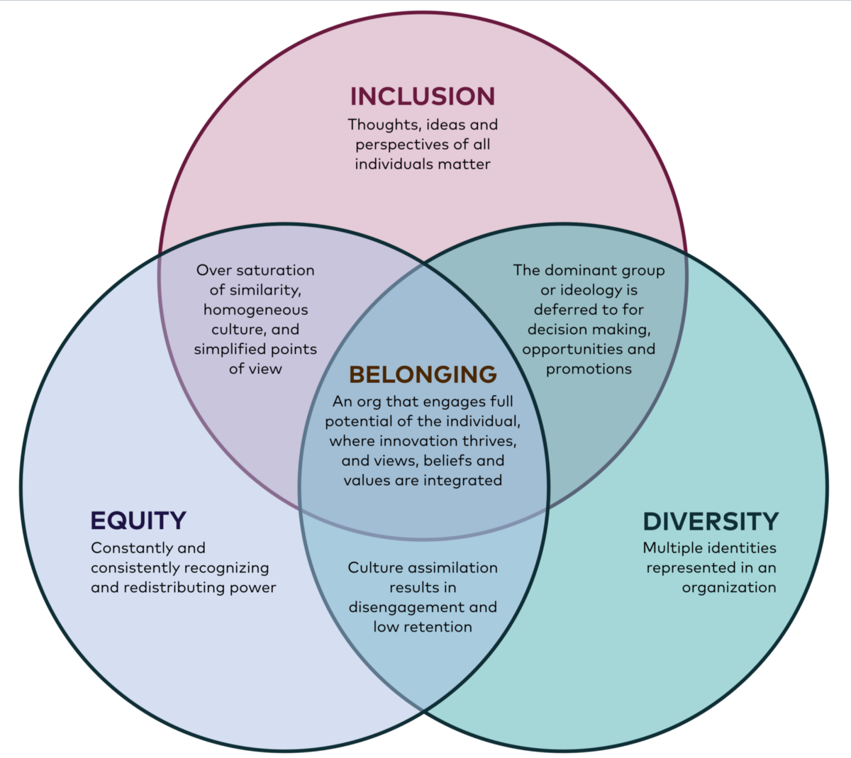 It S 2019 And We Are Still Talking About Equity Diversity And Inclusion Equality And Diversity Equality Diversity And Inclusion Inclusive Education