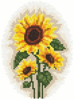 photograph relating to Printable Pictures of Sunflowers known as Free of charge Printable Sunflower cross sch Routine Sunflowers