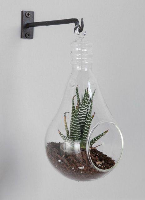 Hanging Terrariums Wish Wish Wish Pinterest Hanging