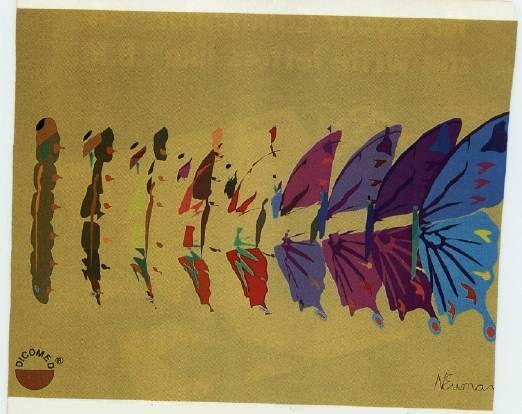 Butterfly Metamorphosis Art