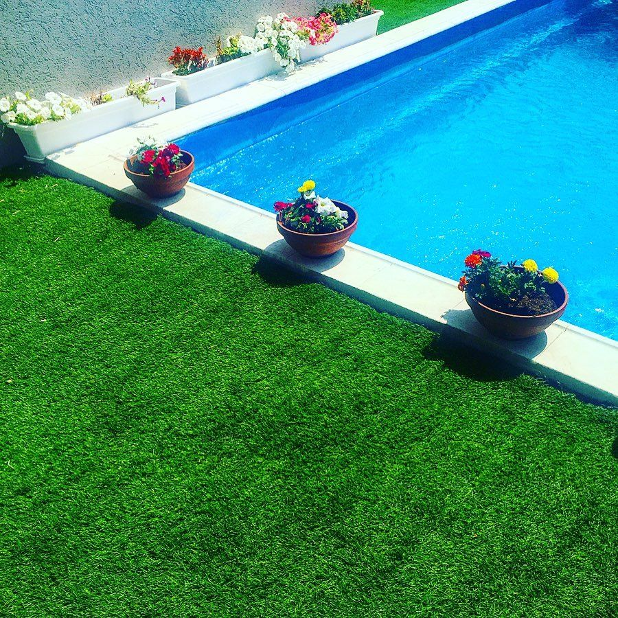 Vivush On Instagram Pool Mygarden Color Green Blue