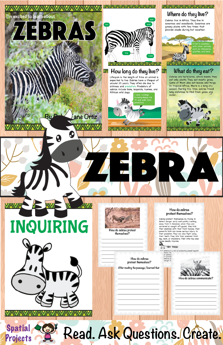 All About Zebras Nonfiction Unit   Escuela, Curriculums