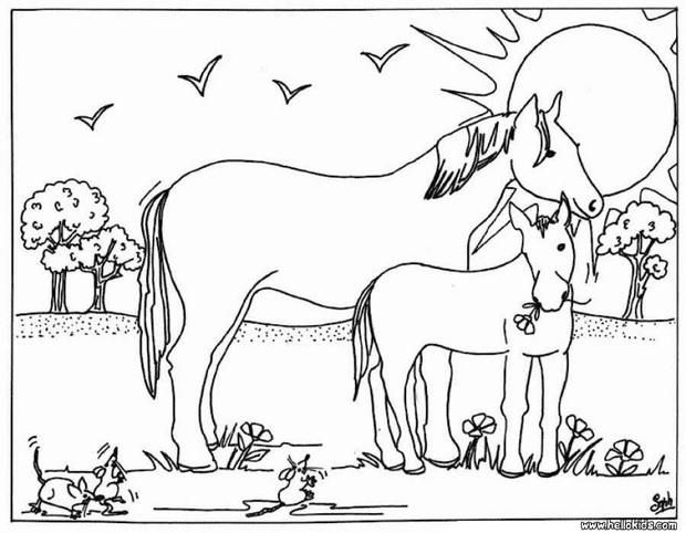 interactive online coloring pages for kids to color and print online have fun coloring this mare and foal coloring page