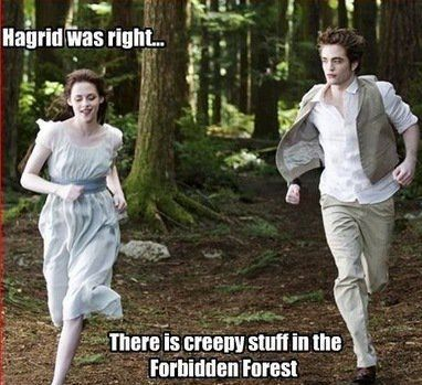 Hagrid was right...there IS creepy stuff in the Forbidden Forest... hahahahahaha