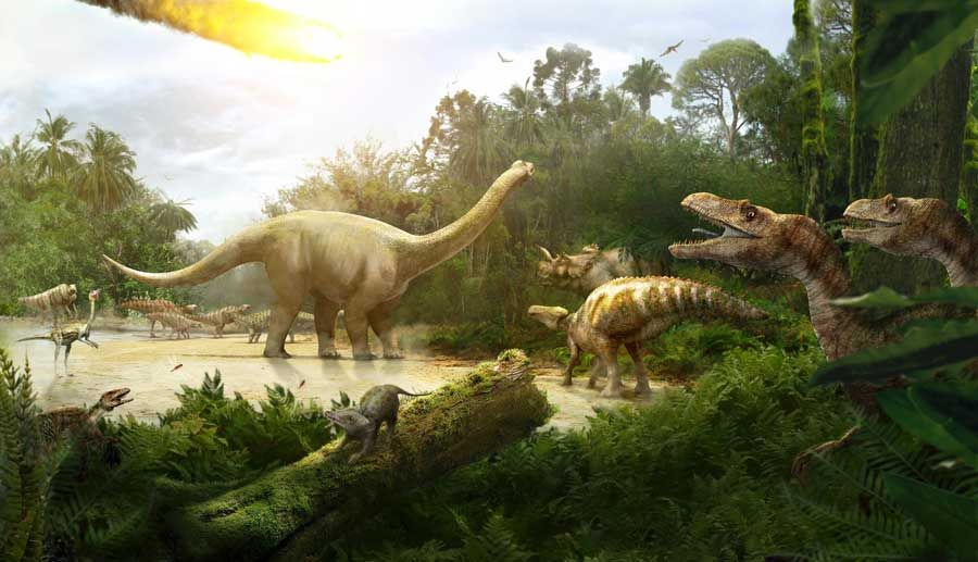theories on dinosaur extinction essay Access to over 100,000 complete essays and  may have caused the extinction of the dinosaur and  the dinosaur story were the theories of dinosaurs migrating .