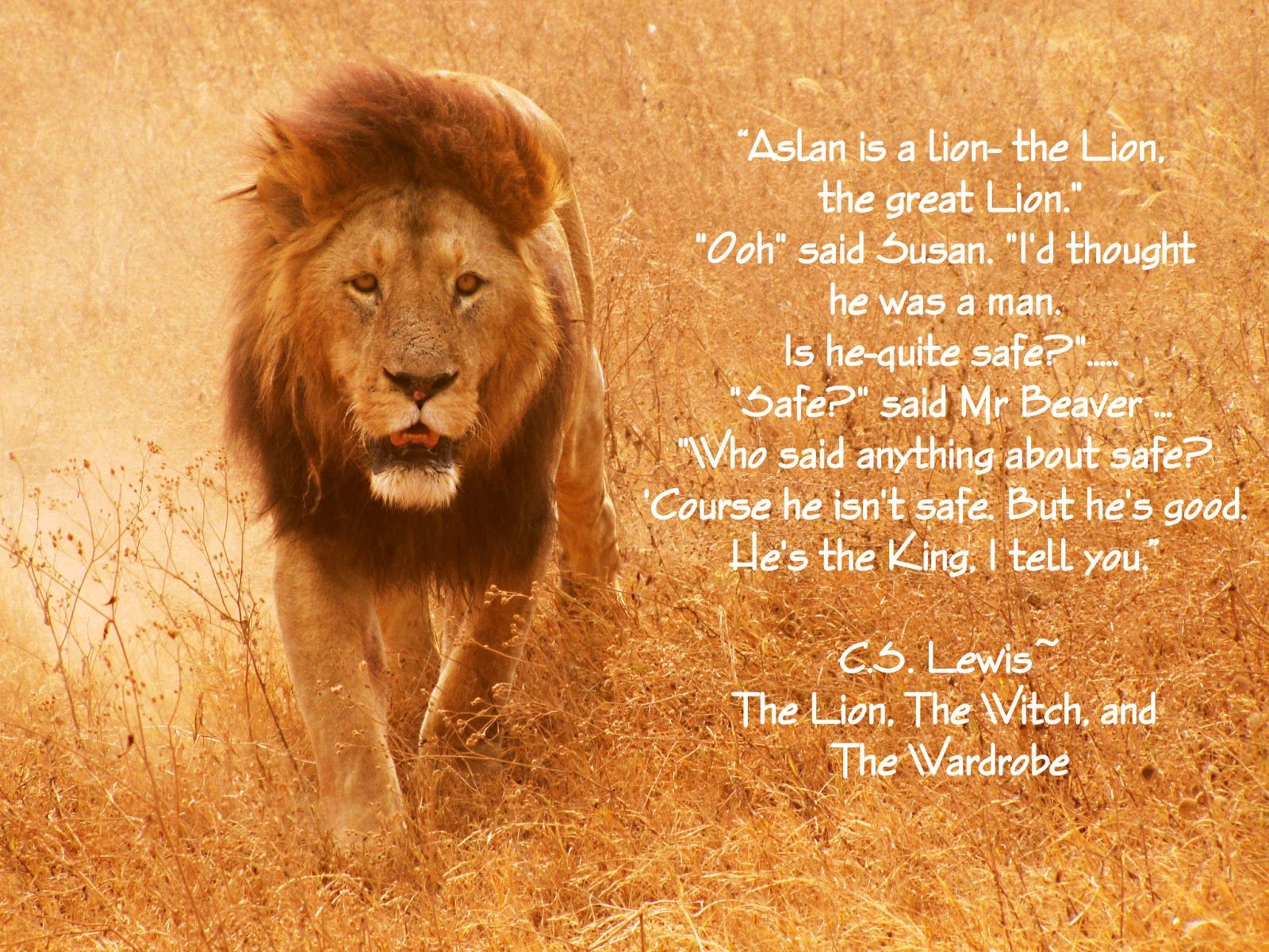 c. s. lewis quotes | This C.S Lewis quote changed and shaped my ... for Narnia Aslan Quotes  53kxo