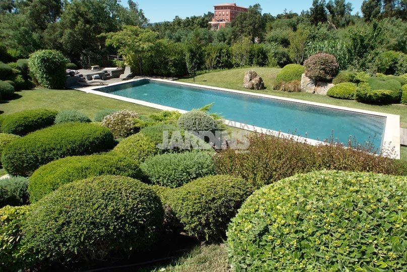 topiary tous les arbustes taill s en sph re pittosporum tobira nana lonicera nitida. Black Bedroom Furniture Sets. Home Design Ideas