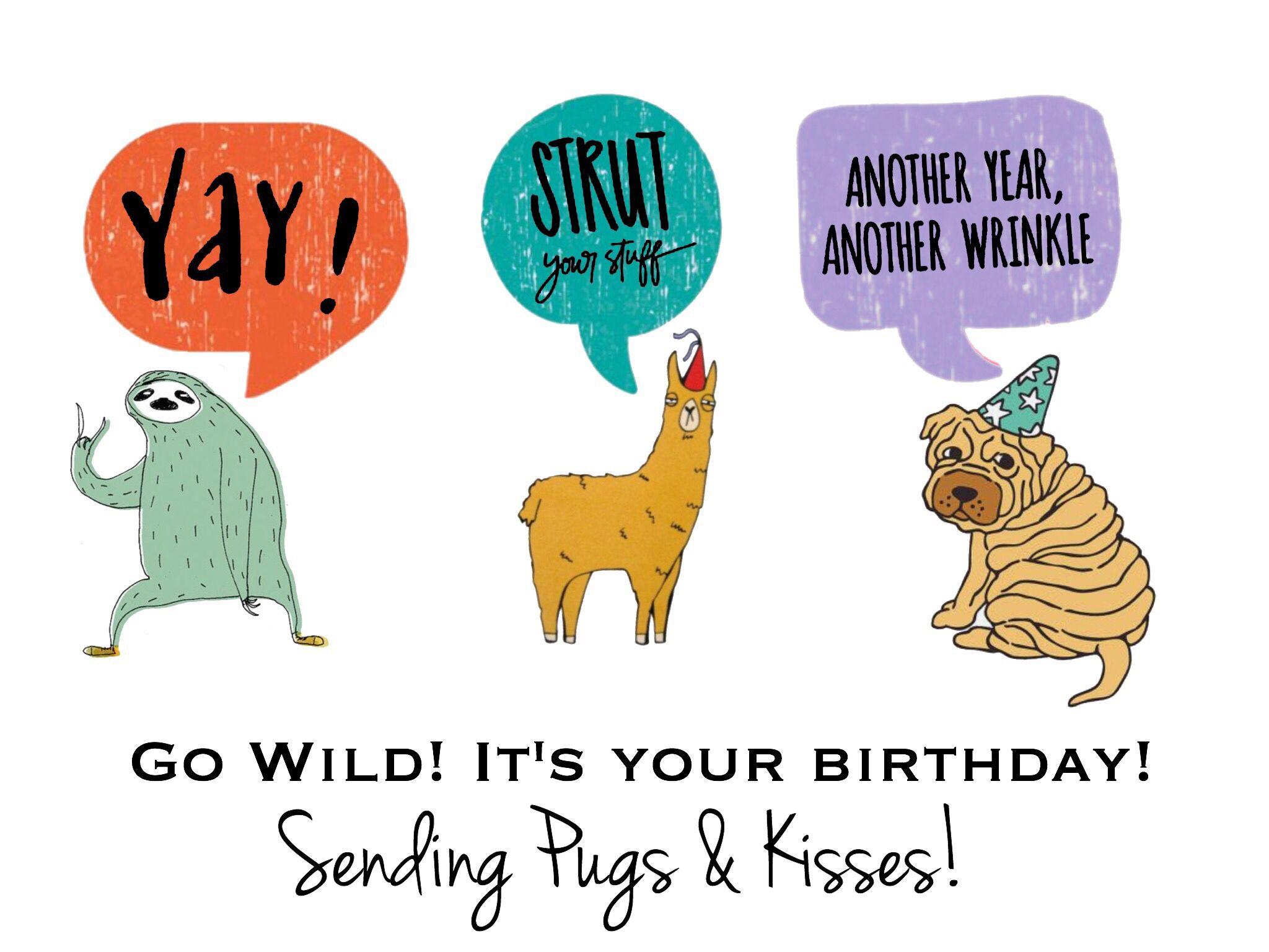 Llama Birthday Card Pug Birthday Card Sloth Birthday Card Go The