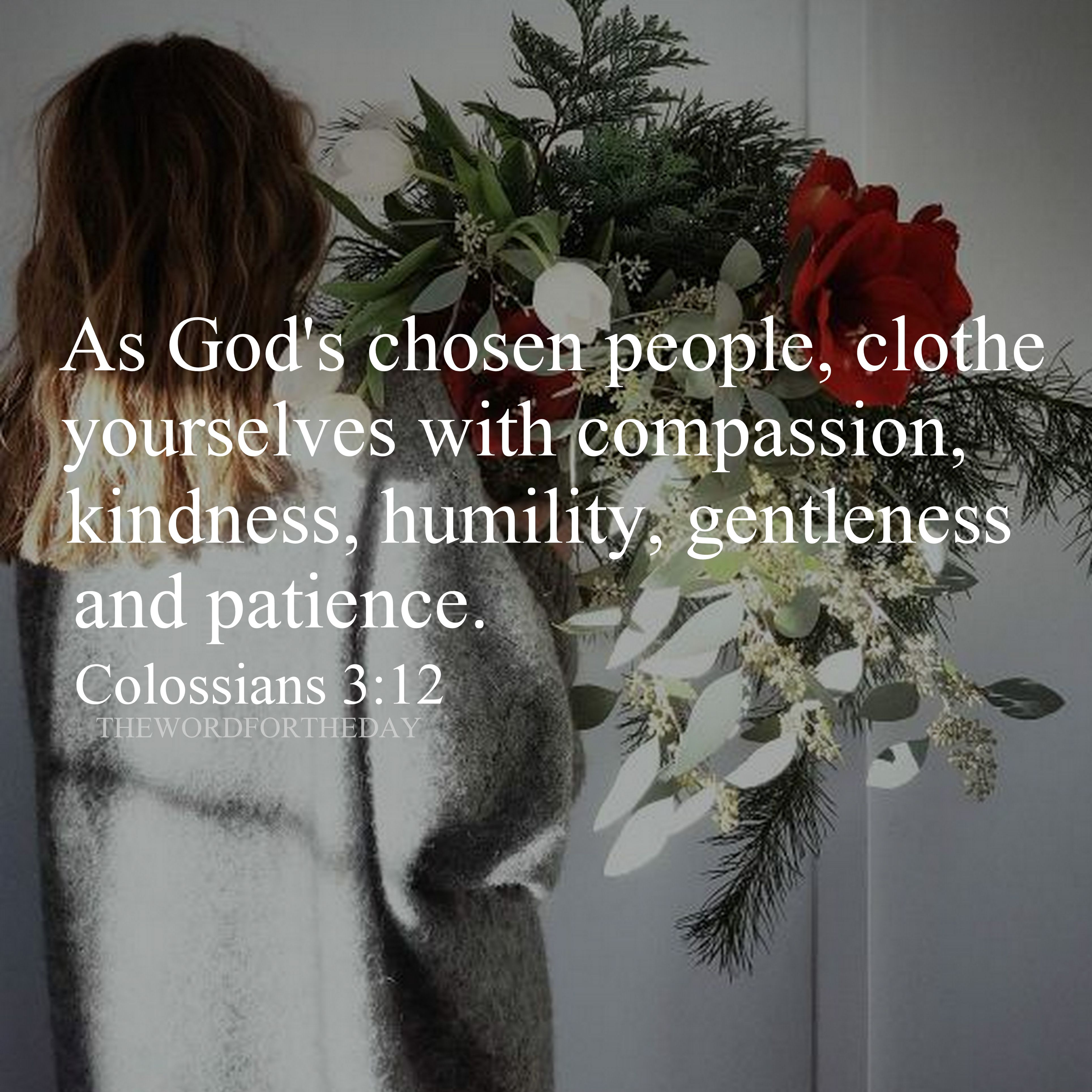 Bible Quotesbible Verseflowerskindnesscompassiondaily