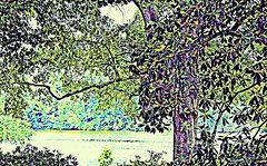 Teresa Johnson - Purple Magnolias and...