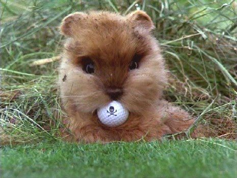 Fondant Cake Mishap And A Fondant Caddyshack Gopher Tutorial Bakingdom Caddyshack Gopher Golf Quotes Golf