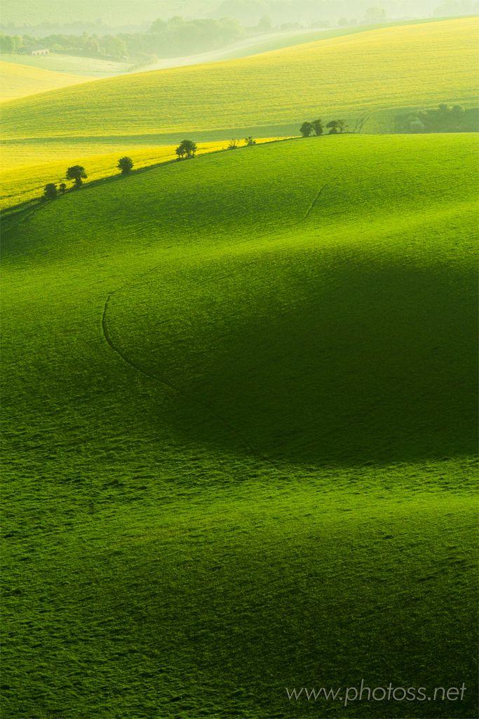 Lemonade Landscape Green Landscape Nature Photography