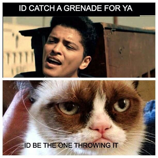 I Have To Say That Song S Kinda Old Now Funny Grumpy Cat Memes Grumpy Cat Meme Grumpy Cat Humor