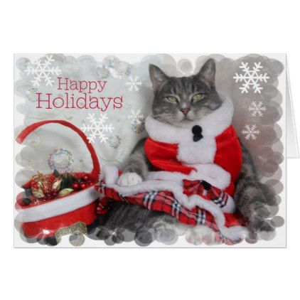 Happy Holidays Purr From Pretty Cat Holiday Card Zazzle Com Pet Holiday Cat Greeting Cards Pretty Cats