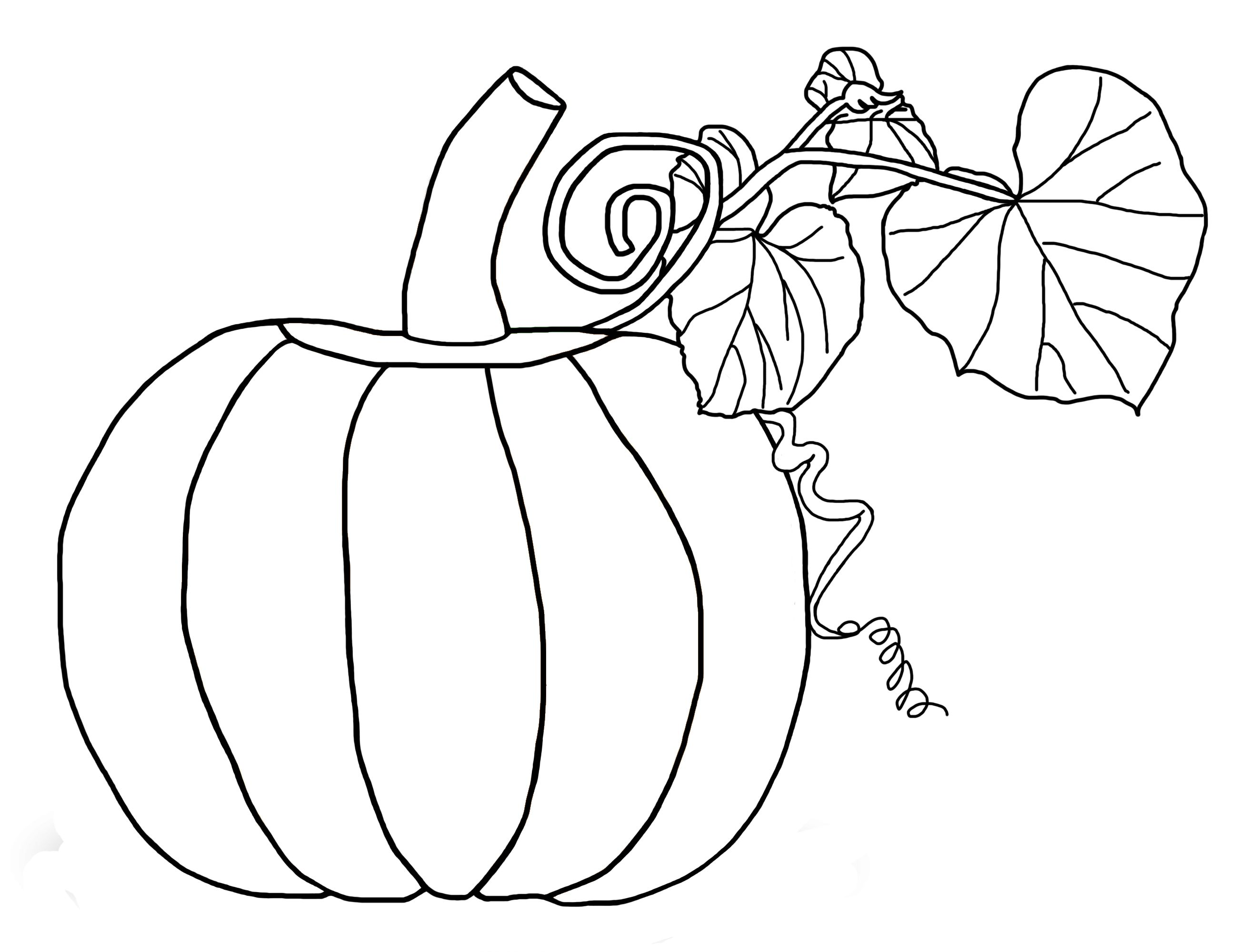 simple pumpkin coloring pages kindergarten fall coloring pages