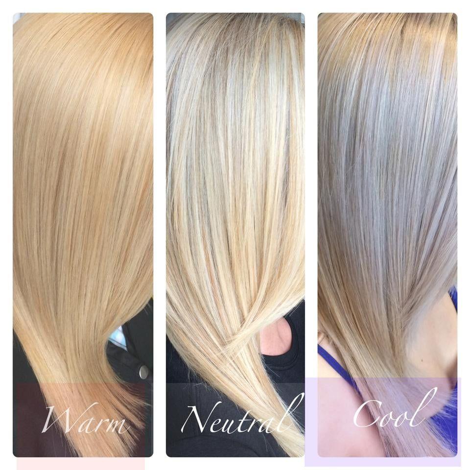 Warm Vs Neutral Vs Cool Blonde Cool Blonde Hair Warm Blonde Hair Cool Blonde Hair Colour