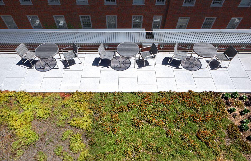 Wilf Hall Nyu School Of Law Morris Adjmi Architects Received Two