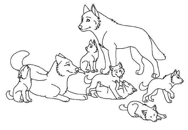Babies Wolf Coloring Page Download Print Online Coloring Pages For Free Color Nimbus Deer Coloring Pages Wolf Colors Online Coloring Pages