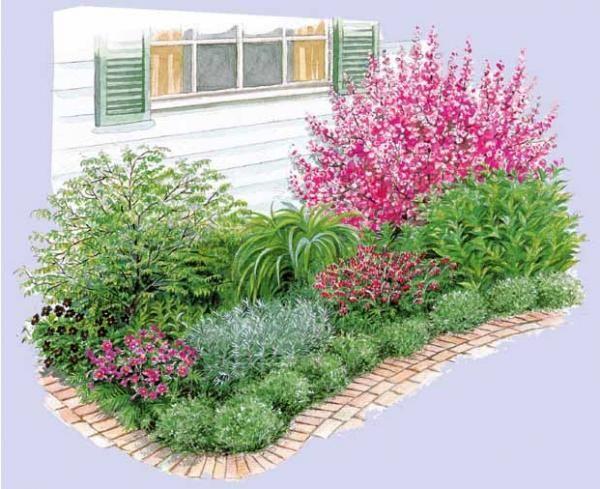 arbuste a fleurs dans un massif recherche google massif pinterest arbuste jardins et. Black Bedroom Furniture Sets. Home Design Ideas