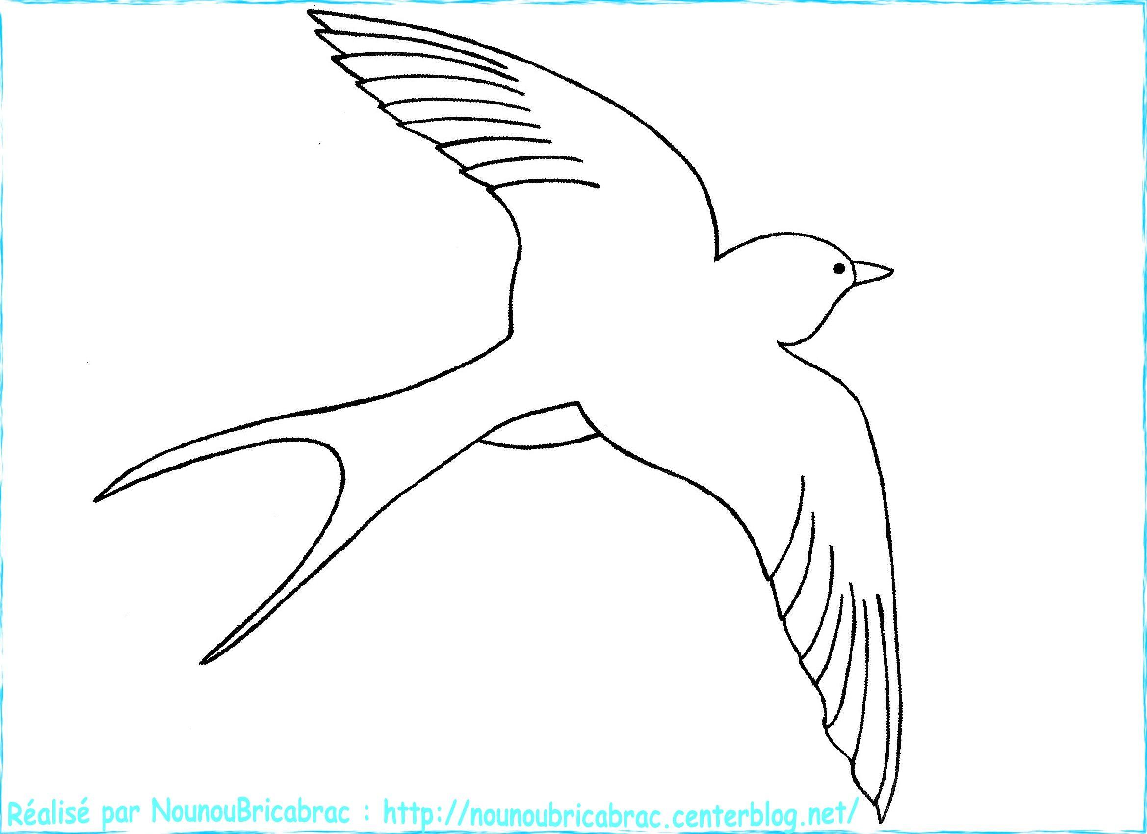Dessin facile hirondelle - Modele d oiseaux a dessiner ...
