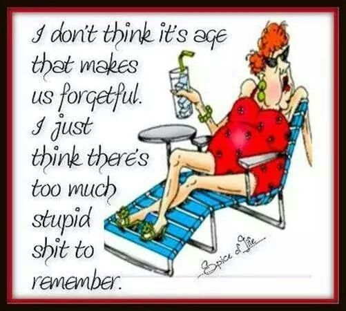 Forgetfulness Funny Senior Humor Funny Quotes