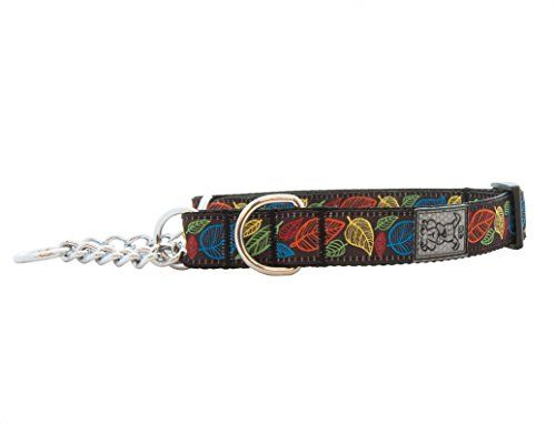 RC Pet Products 1Inch Training Martingale Dog Collar 14 to