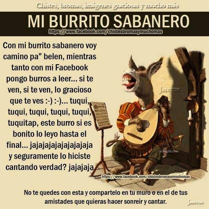 Mi Burrito Sabanero Funny Spanish Memes Memes Funny Memes